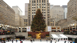 christmas-tree-eventi